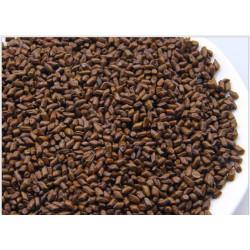 Травяной чай для очищения кишечника и токсинов в печени Кассия тора узколистная, трубчатая.